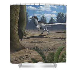 A Deinonychosaur Leaves Tracks Shower Curtain by Emily Willoughby