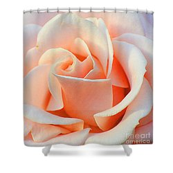 A Delicate Rose Shower Curtain