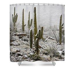 A Desert Blizzard  Shower Curtain by Saija  Lehtonen