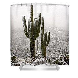 A Desert Southwest Snow Day  Shower Curtain by Saija  Lehtonen