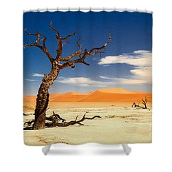 A Desert Story Shower Curtain