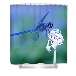 A Dragonfly V Shower Curtain by Raymond Salani III