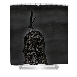 A Dragons Night Shower Curtain by Kim Pate
