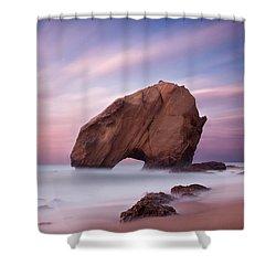 A Dream Shower Curtain