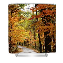 A Drive Through The Woods Shower Curtain