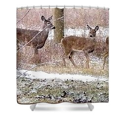 A Dusting On The Deer Shower Curtain