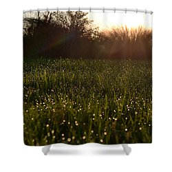 Shower Curtain featuring the photograph A Field Of Jewels by Melanie Moraga