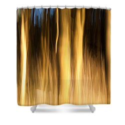 Shower Curtain featuring the photograph A Fiery Forest by Davorin Mance