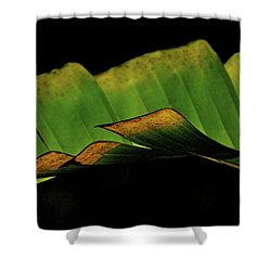 A Floating Heliconia Leaf Shower Curtain