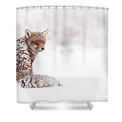 A Red Fox Fantasy Shower Curtain