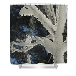 A Frosty Morning Shower Curtain
