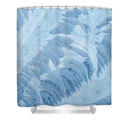A Frosty Window Art Shower Curtain
