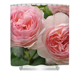 Shower Curtain featuring the photograph A Generous Gardener by Sabine Edrissi