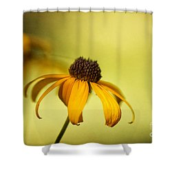 A Gift From August Shower Curtain by Lois Bryan