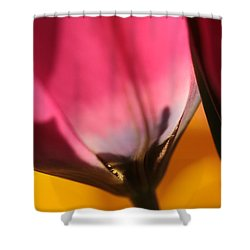 A Glimpse Into Eternity Shower Curtain