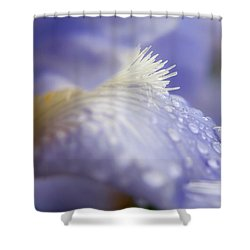 A Glimpse Of Beauty Shower Curtain by Sabine Edrissi