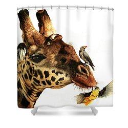 A Good Ticking Off Shower Curtain