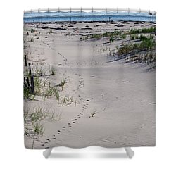 A Gull's Walk To The Ocean Shower Curtain