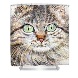 A Handsome Cat  Shower Curtain by Jingfen Hwu