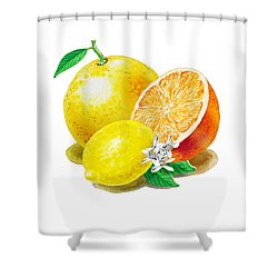 Shower Curtain featuring the painting A Happy Citrus Bunch Grapefruit Lemon Orange by Irina Sztukowski