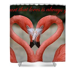 A Heart That Loves Is Always Young Shower Curtain