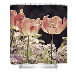A Hint Of Blush Shower Curtain by Emily Kay