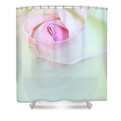 A Hint Of Pink Shower Curtain by Sabrina L Ryan
