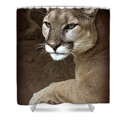 A Hope For Harmony Shower Curtain