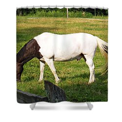 A Horse Named Dipstick Shower Curtain