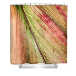 A Leaf Shower Curtain