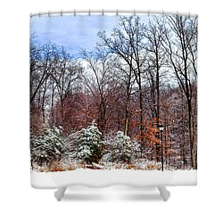 A Light Dusting Shower Curtain by Frozen in Time Fine Art Photography