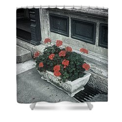 Shower Curtain featuring the photograph A Little Color In A Drab World by Rodney Lee Williams