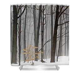 A Little Color Shower Curtain
