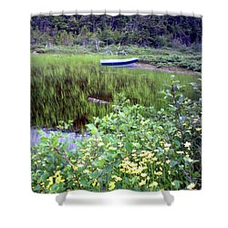 Shower Curtain featuring the photograph A Little Flat Awaiting by Barbara Griffin