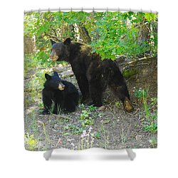 A Little Growl Before Departing Shower Curtain by Jeff Swan