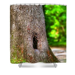 Shower Curtain featuring the photograph A Little Hiding Place by Ester  Rogers