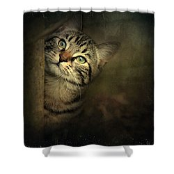 Shower Curtain featuring the photograph A Little Shy by Annie Snel