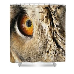 Shower Curtain featuring the photograph Bubo Bubo- Eurasian Eagle Owl. Close Up. by Ausra Huntington nee Paulauskaite