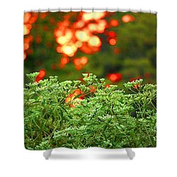 A Love Bug Sunset Shower Curtain