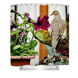 Shower Curtain featuring the photograph A Lovely Morning by VLee Watson