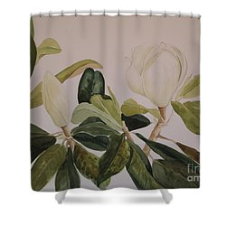 Shower Curtain featuring the painting A Magnolia Duet by Nancy Kane Chapman