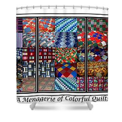 A Menagerie Of Colorful Quilts Triptych Shower Curtain by Barbara Griffin