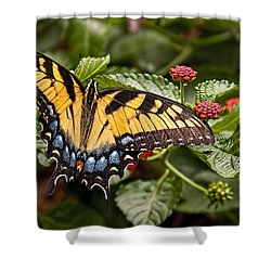 A Moments Rest Shower Curtain