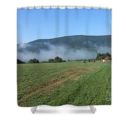 A Morning Ride On Our Paso Fino Stallions Shower Curtain by Patricia Keller