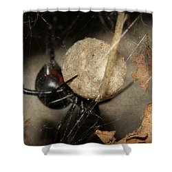 A Mothers Den Shower Curtain by Melanie Lankford Photography