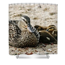 A Mother's Love Shower Curtain by Barbara Bardzik