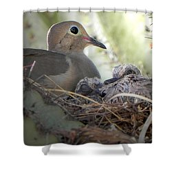 Shower Curtain featuring the photograph A Mothers' Love by Deb Halloran