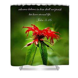 A Mountain Flower  John 3 16 Shower Curtain by Randall Branham