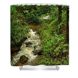 Shower Curtain featuring the photograph A Mountain Stream After The Spring Rains by Bob Sample