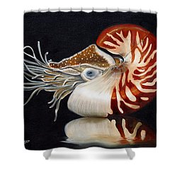 A Nautilus Study Shower Curtain